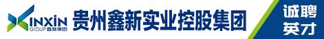 贵州鑫新实业控股集团有限